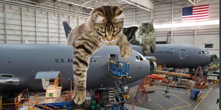 quando o gato quer conquistar o mundo