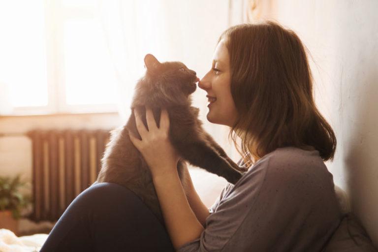 Gatos gostam de pessoas sim