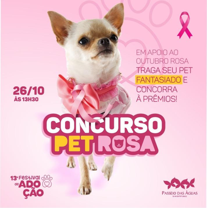 Concurso Pet Rosa