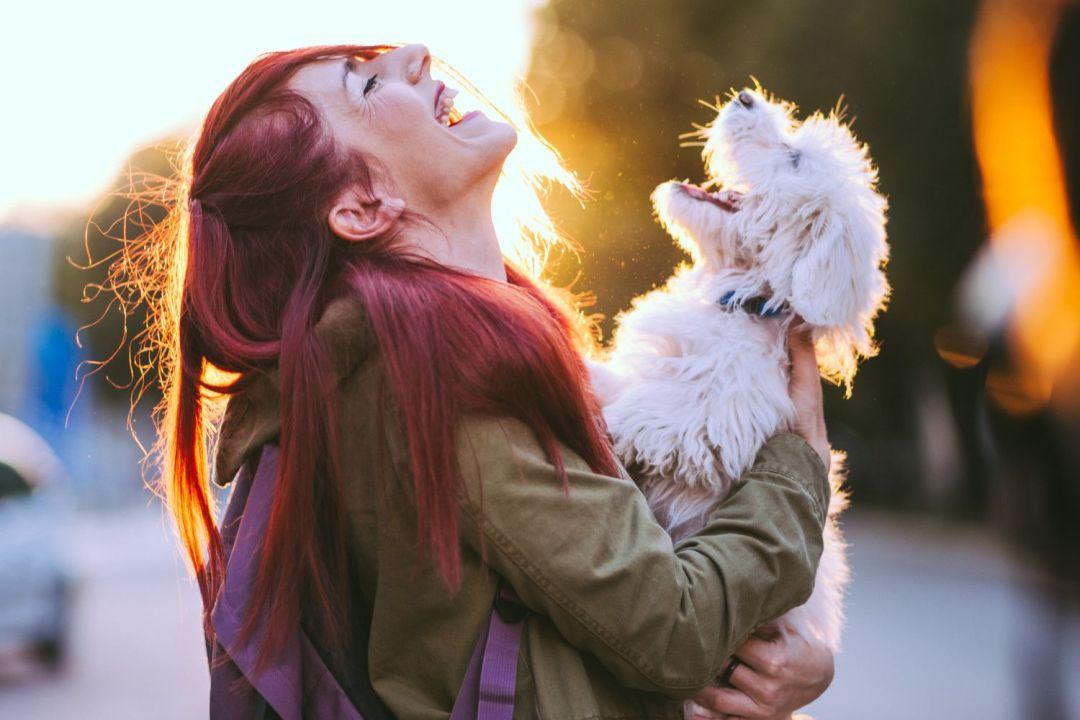 tutores de animais são mais sensíveis ao choro do cachorro